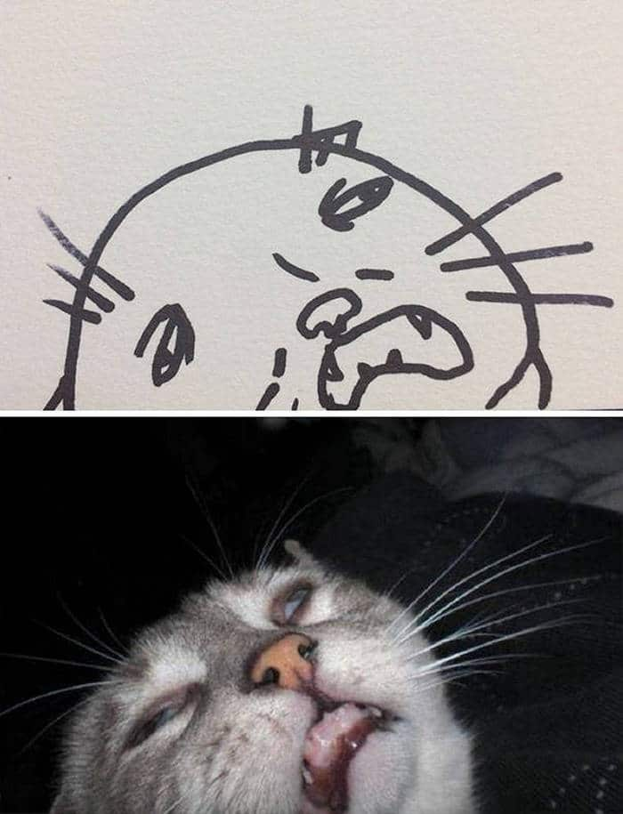 20 Epic Fail Cat Drawings That You Never Imagine -05