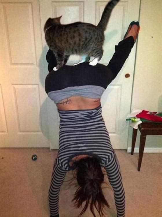 50 Pictures of People Posing With Funny Animals Will Blow Your Mind -11