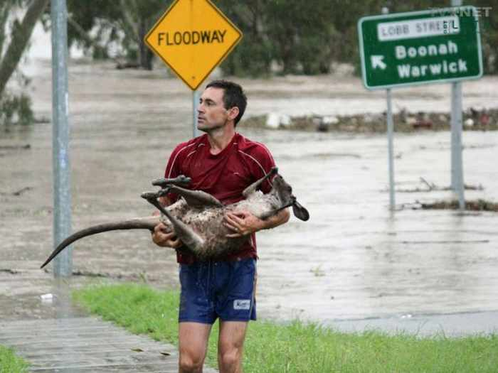 Meanwhile In Australia - 35 Pics -13